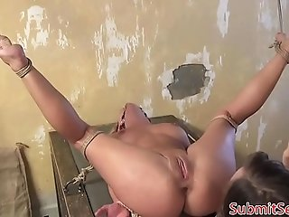 Spread bdsm sub sucks cock before anal fucking